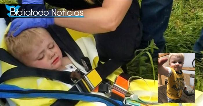 """Bebé desaparecido en bosque fue hallado sano, """"Dios nos guió"""" dicen las autoridades"""