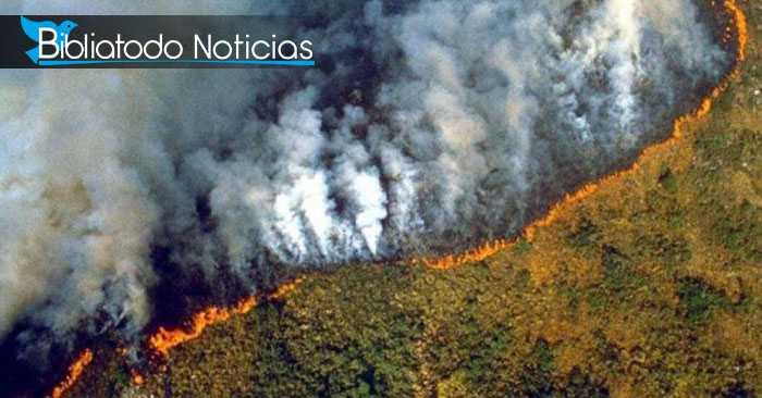 """DEVASTADOR: El """"pulmón del planeta"""" es arrasado por el fuego consumidor de 16 días"""