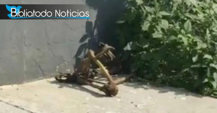 Encuentran restos humanos de mujeres embarazadas usados para ritos satánicos en México.